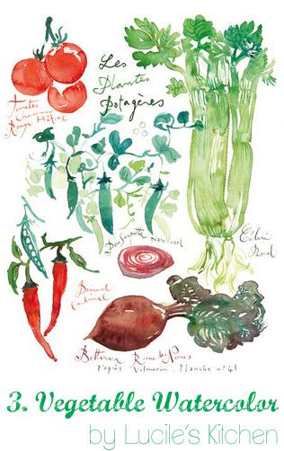 vegetable watercolor copy